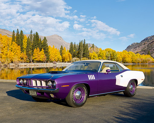 AUT 23 RK1081 01 © Kimball Stock 1971 Plymouth Hemi Barracuda Plum Crazy And White 3/4 Side View On Pavement By Trees