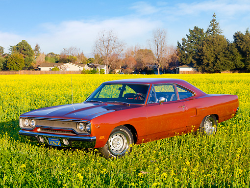 AUT 23 RK1757 01 © Kimball Stock 1970 Plymouth Hemi Road Runner Orange 3/4 Front View In Field Of Yellow Wildflowers