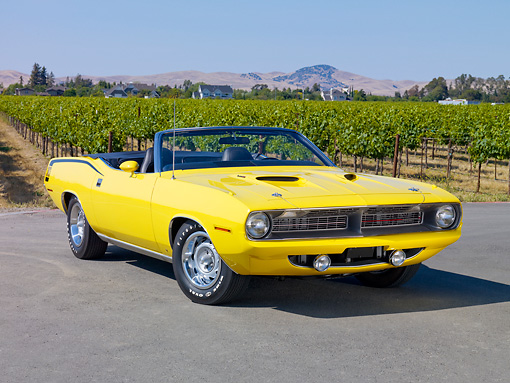 AUT 23 RK1853 01 © Kimball Stock 1970 Plymouth Barracuda 383 Convertible Yellow 3/4 Front View On Pavement By Vineyard