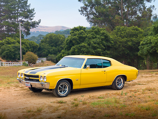 AUT 23 RK1879 01 © Kimball Stock 1970 Chevrolet Chevelle SS 454 Yellow With Black Stripes 3/4 Front View On Dirt By Trees
