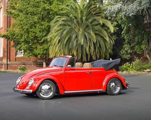 AUT 23 RK1946 01 © Kimball Stock 1970 Volkswagen Beetle Convertible Red 3/4 Front View On Pavement By Trees