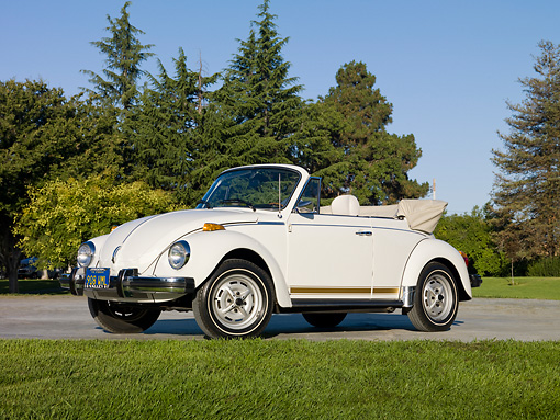 AUT 23 RK2023 01 © Kimball Stock 1979 Volkswagen Bug Convertible White 3/4 Side View On Pavement By Grass And Trees