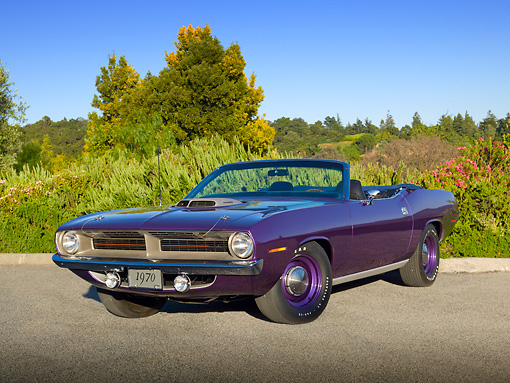 AUT 23 RK2136 01 © Kimball Stock 1971 Plymouth Hemi Cuda Sassy Grass Convertible Purple 3/4 Front View On Pavement By Trees