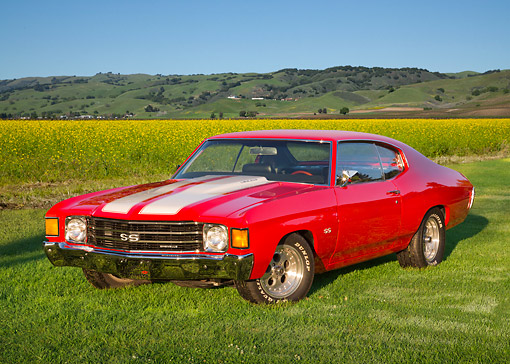 AUT 23 RK3437 01 © Kimball Stock 1972 Chevrolet Chevelle Ferrari Red 3/4 Front View On Grass By Field Of Wildflowers