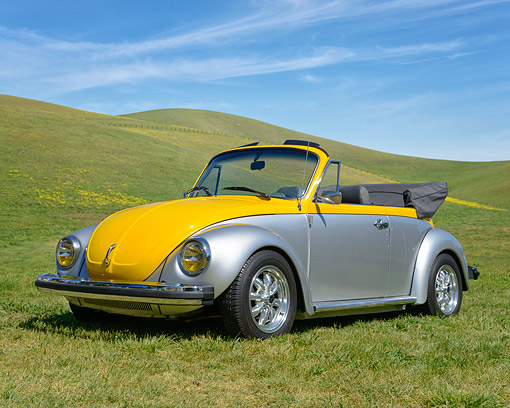 AUT 23 RK3535 01 © Kimball Stock 1979 Volkswagon Beetle Convertible Yellow And Silver 3/4 Front View On Grass