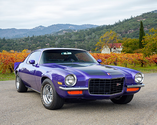 AUT 23 RK3570 01 © Kimball Stock 1973 Chevrolet Camaro Z-28 Purple On Pavement By Vineyard