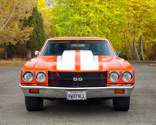 AUT 23 RK3767 01 © Kimball Stock 1970 Chevrolet Chevelle SS Custom Orange With White Stripes Front View On Road By Autumn Trees