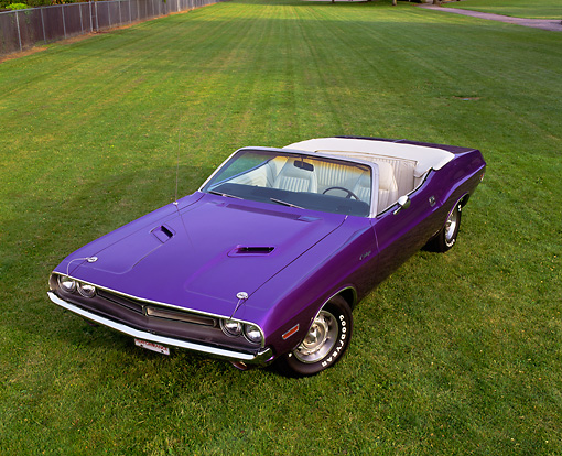 AUT 23 RK0208 02 © Kimball Stock 1971 Dodge Challenger Convertible Plum Crazy Overhead 3/4 Front View On Grass