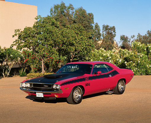 AUT 23 RK0318 01 © Kimball Stock 1970 Dodge Challenger T/A Pink And Black 3/4 Front View On Pavement By Bushes