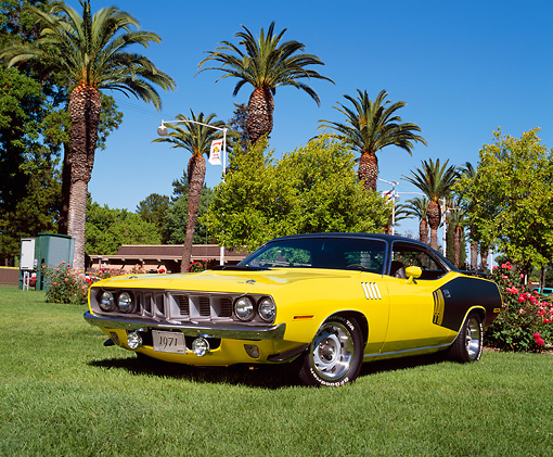 AUT 23 RK0460 03 © Kimball Stock 1971 Plymouth 'Cuda 440 Yellow And Black Low 3/4 Front View On Grass By Trees
