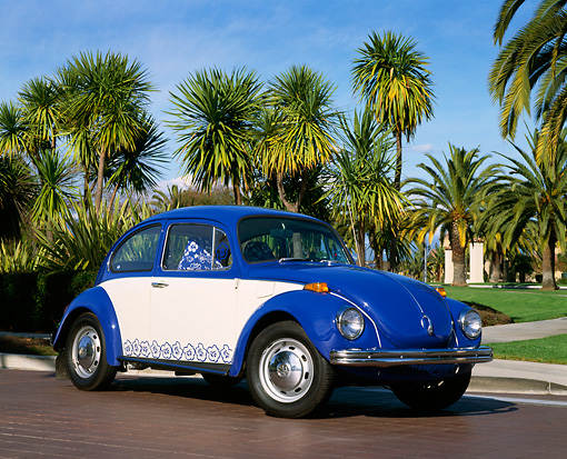 AUT 23 RK0494 01 © Kimball Stock 1971 VW Super Beetle Blue And White Low 3/4 Front View By Palm Trees