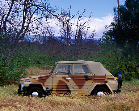AUT 23 RK0752 01 © Kimball Stock 1973 Volkswagen Thing 181 Camouflage Profile View In Field By Trees Sky