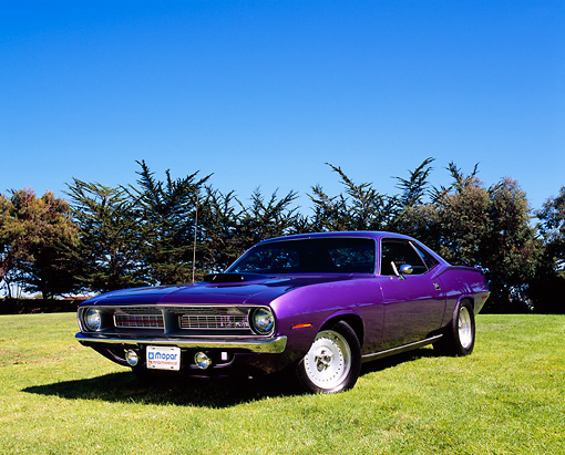 AUT 23 RK0875 02 © Kimball Stock 1970 Plymouth 'Cuda Plum Crazy Purple Low 3/4 Front View On Grass Trees Background