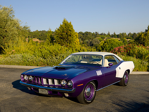 AUT 23 RK1079 01 © Kimball Stock 1971 Plymouth Hemi Barracuda Convertible Purple 3/4 Front View On Pavement