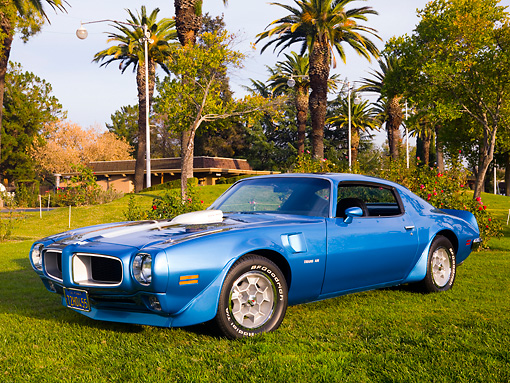 AUT 23 RK1627 01 © Kimball Stock 1972 Pontiac Trans Am Blue 3/4 Front View On Grass By Trees