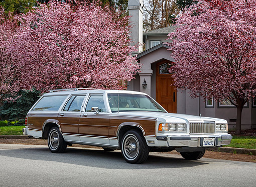 AUT 24 RK0167 01 © Kimball Stock 1988 Mercury Marquis Colony Park White With Wood Panel 3/4 Front View On Pavement By Cherry Blossom Trees