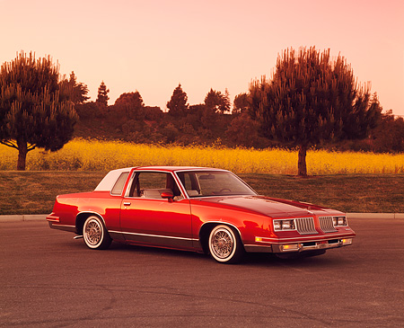 AUT 24 RK0089 06 © Kimball Stock 1984 Oldsmobile Cutlass Supreme Lowrider Burgundy 3/4 Side View On Pavement By Yellow Flowers And Trees Filtered