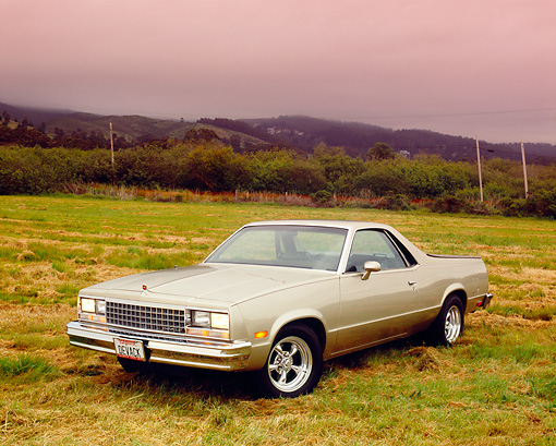 AUT 24 RK0158 01 © Kimball Stock 1983 Chevrolet El Camino Tan 3/4 Front View On Grass