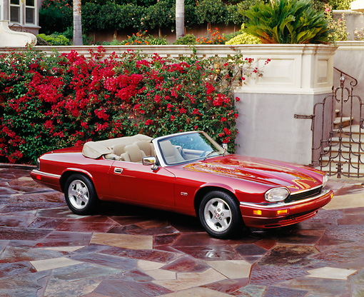AUT 25 RK0463 01 © Kimball Stock 1995 Red XJS Jaguar Convertible Overhead 3/4 Side On Driveway By Flowers