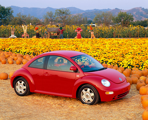 AUT 25 RK1095 04 © Kimball Stock 1999 Volkswagen Beetle Turbo Red 3/4 Side View At Pumpkin Patch
