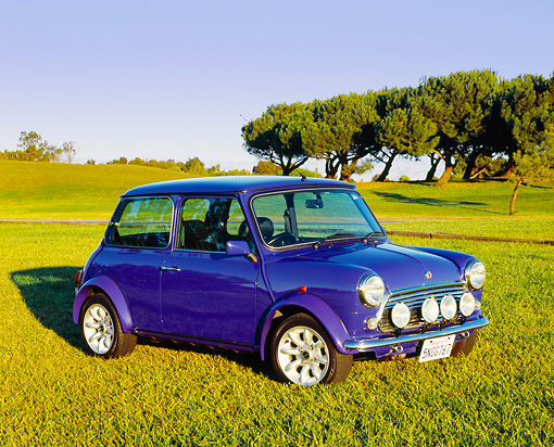 AUT 25 RK1416 03 © Kimball Stock 1998 Mini Paul Smith Rover Blue 3/4 Side View On Grass