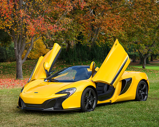 AUT 28 RK0215 01 © Kimball Stock 2016 McLaren 650S Spider Yellow 3/4 Front View By Autumn Trees