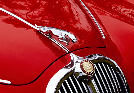 AUT 30 RK0529 09 © Kimball Stock 1966 Jaguar S-Type Close Up Of Emblem