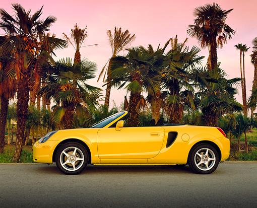 AUT 33 RK0136 11 © Kimball Stock 2000 Toyota MR2 Spyder Yellow Profile On Pavement By Palm Trees Filtered