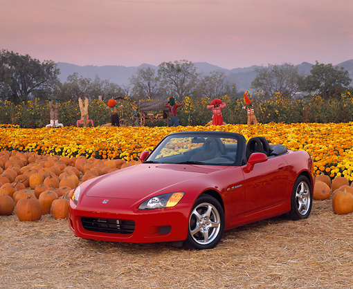 AUT 33 RK0043 02 © Kimball Stock Honda S 2000 Convertible Red Front 3/4 View By Pumpkins Flowers And Scarecrows