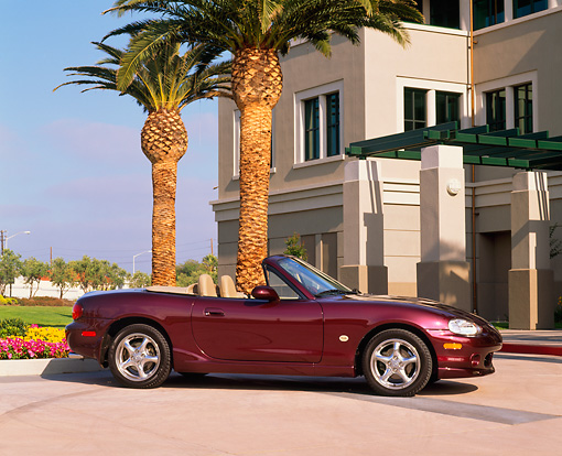 AUT 33 RK0162 02 © Kimball Stock 2000 Mazda Miata Convertible Mahogany 3/4 Side View On Pavement By Palm Tree And Building