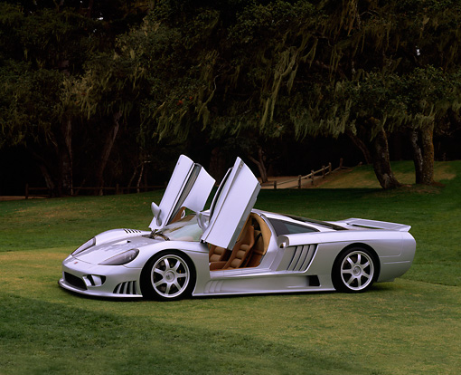 AUT 34 RK0081 02 © Kimball Stock 2001 Saleen S7 Silver 3/4 Front View On Grass Door Open Trees Background