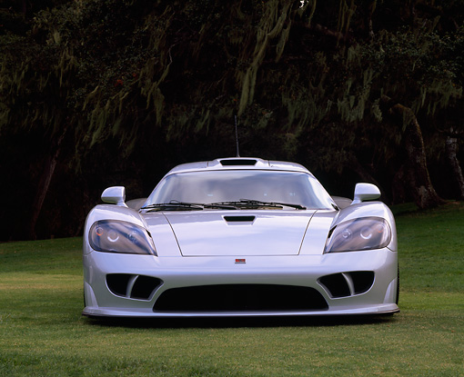 AUT 34 RK0091 02 © Kimball Stock 2001 Saleen S7 Silver Head On View On Grass Trees Background