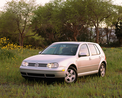 AUT 34 RK0261 02 © Kimball Stock 2001 VW Golf GLS 1.8 T Silver 3/4 Front View On Tall Grass Trees At Dusk