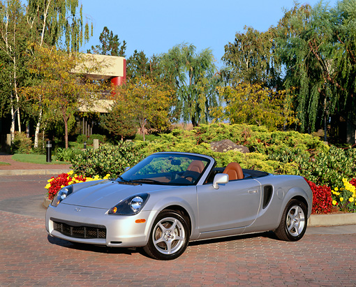AUT 35 RK0270 02 © Kimball Stock 2002 Toyota MR2 Convertible Silver 3/4 Front View By Flowers Bushes And Trees