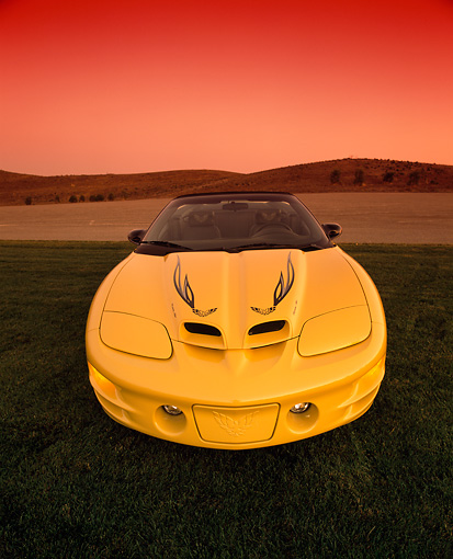 AUT 35 RK0076 02 © Kimball Stock 2002 Pontiac Firebird Trans Am Convertible Yellow Head On Shot On Grass Wide Angle Filtered