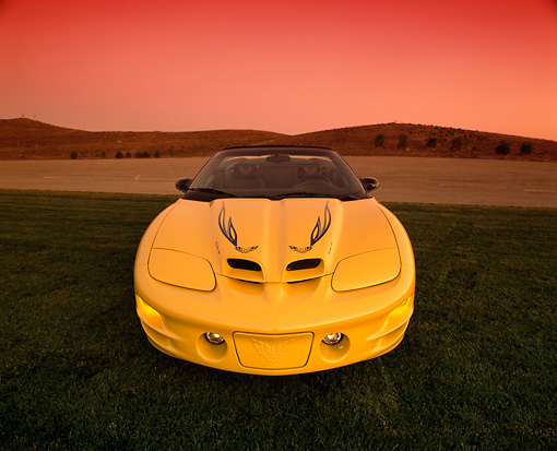 AUT 35 RK0076 05 © Kimball Stock 2002 Pontiac Firebird Trans Am Convertible Yellow Head On Shot On Grass Wide Angle Filtered