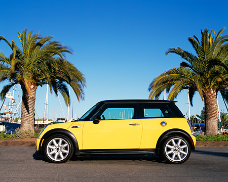 AUT 35 RK0298 03 © Kimball Stock 2002 Mini Cooper S Black And Yellow Side View By Palm Trees Blue Sky