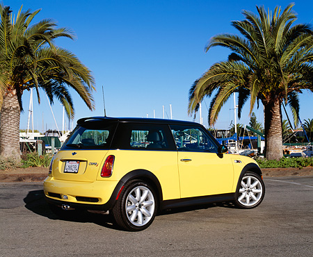 AUT 35 RK0305 02 © Kimball Stock 2002 Mini Cooper S Yellow And Black 3/4 Rear View On Pavement By Palm Trees Blue Sky