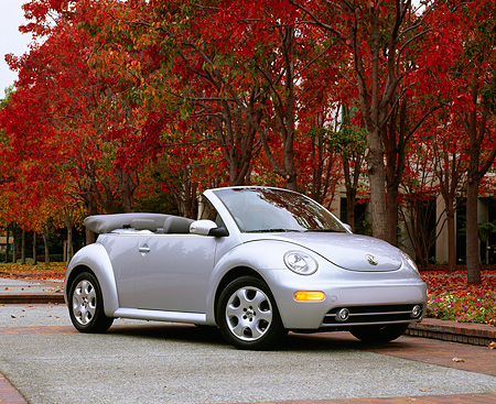 AUT 38 RK0084 02 © Kimball Stock 2003 VW New Beetle Convertible Silver 3/4 Front View On Pavement By Fall Trees
