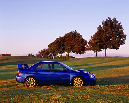 AUT 39 RK0040 02 © Kimball Stock 2004 Subaru WRX STi Blue Profile View On Grass By Trees Blue Sky