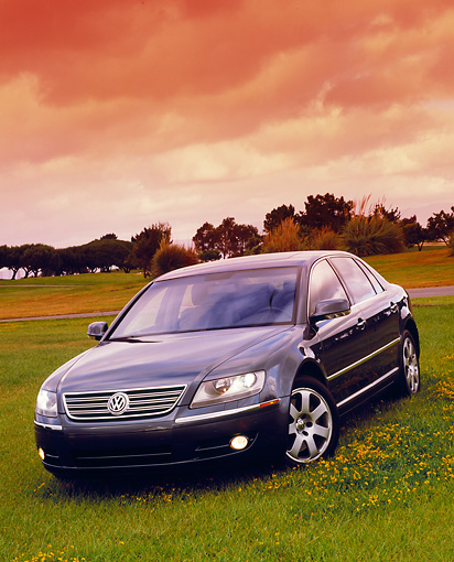 AUT 39 RK0241 05 © Kimball Stock 2004 Volkswagen Phaeton W12 Black 3/4 Front View On Grass Filtered