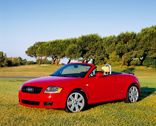 AUT 39 RK0249 02 © Kimball Stock 2004 Audi TT Roadster quattro Red 3/4 Front View On Grass Trees Blue Sky