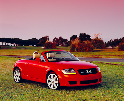 AUT 39 RK0254 02 © Kimball Stock 2004 Audi TT Roadster Quattro Red 3/4 Front View On Grass By Trees Filtered