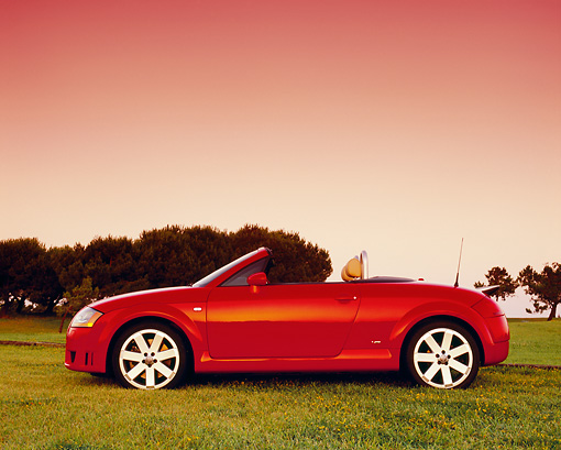 AUT 39 RK0255 02 © Kimball Stock 2004 Audi TT Roadster quattro Red Profile View On Grass Trees Filtered