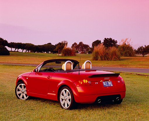 AUT 39 RK0257 01 © Kimball Stock 2004 Audi TT Roadster quattro Red 3/4 Rear View On Grass By Trees Filtered