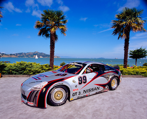 AUT 39 RK0267 02 © Kimball Stock 2004 Nissan 350Z GT3 Race Car 3/4 Front View By Palm Trees And Water