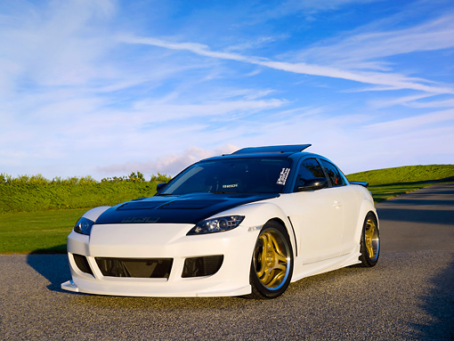AUT 39 RK0359 01 © Kimball Stock 2004 Mazda RX-8 White Black Top Low 3/4 Front View On Grass