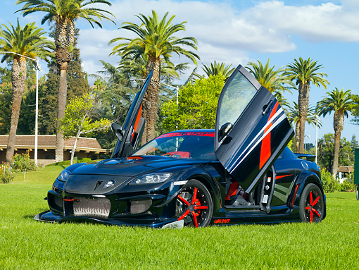 AUT 39 RK0407 01 © Kimball Stock 2004 Mazda RX-8 Custom Black 3/4 Front View Doors Open On Grass By Palm Trees