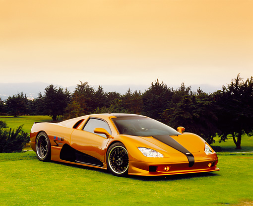AUT 40 RK0213 10 © Kimball Stock 2005 SSC Ultimate Aero Gold And Black 3/4 Side View On Grass By Trees
