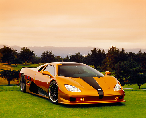 AUT 40 RK0214 03 © Kimball Stock 2005 SSC Ultimate Aero Gold And Black 3/4 Front View On Grass By Trees